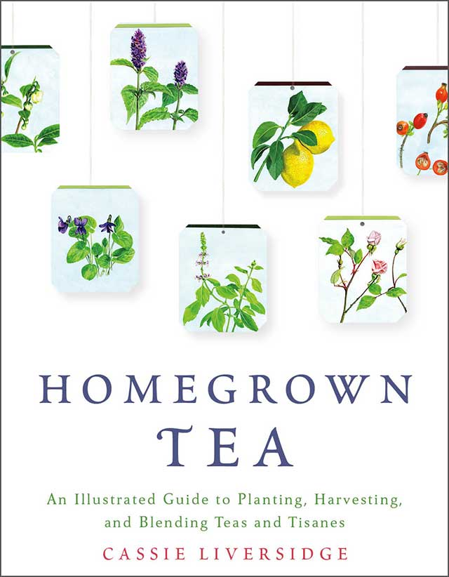 Homegrown-tea-edge